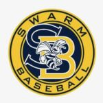 Swarm Baseball